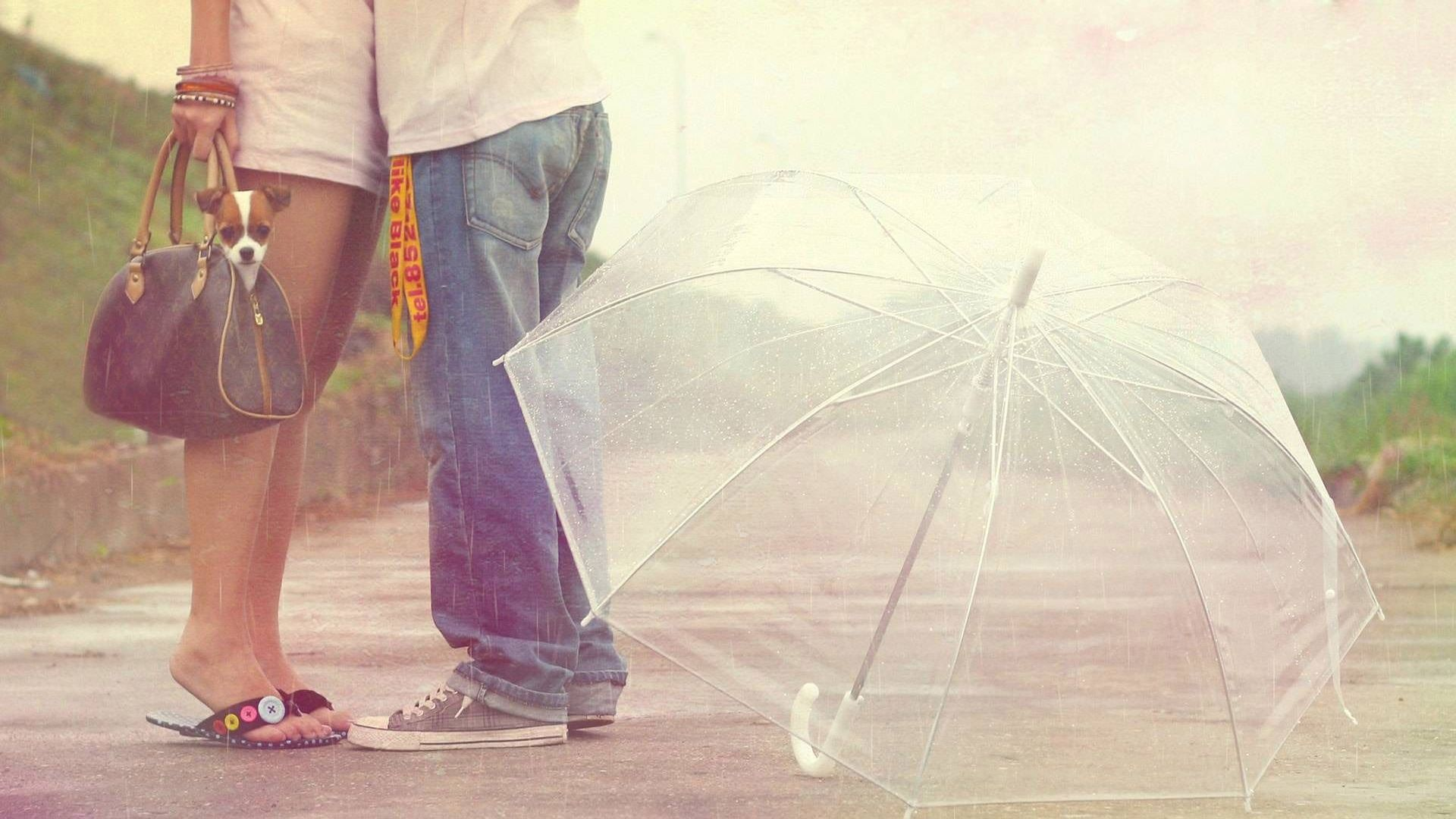 hd hintergrundbilder paar romantisch valentinstag regen regenschirm hund 1920x1080