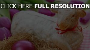 ostern lamm eier gefärbt