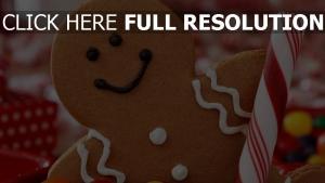 feiertag süßigkeiten weihnachten kekse süßigkeiten neues jahr
