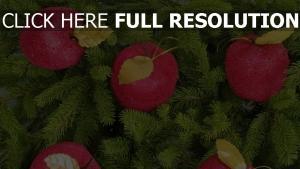 nadeln äpfel zweige baum weihnachtsschmuck neujahr weihnachten feiertag