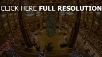 baum weihnachten neujahr feiertag stimmung eitelkeit geschäft