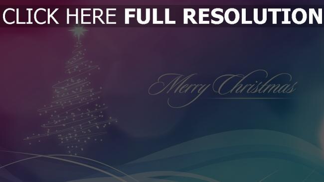 hd hintergrundbilder feiertag weihnachten inschrift tanne