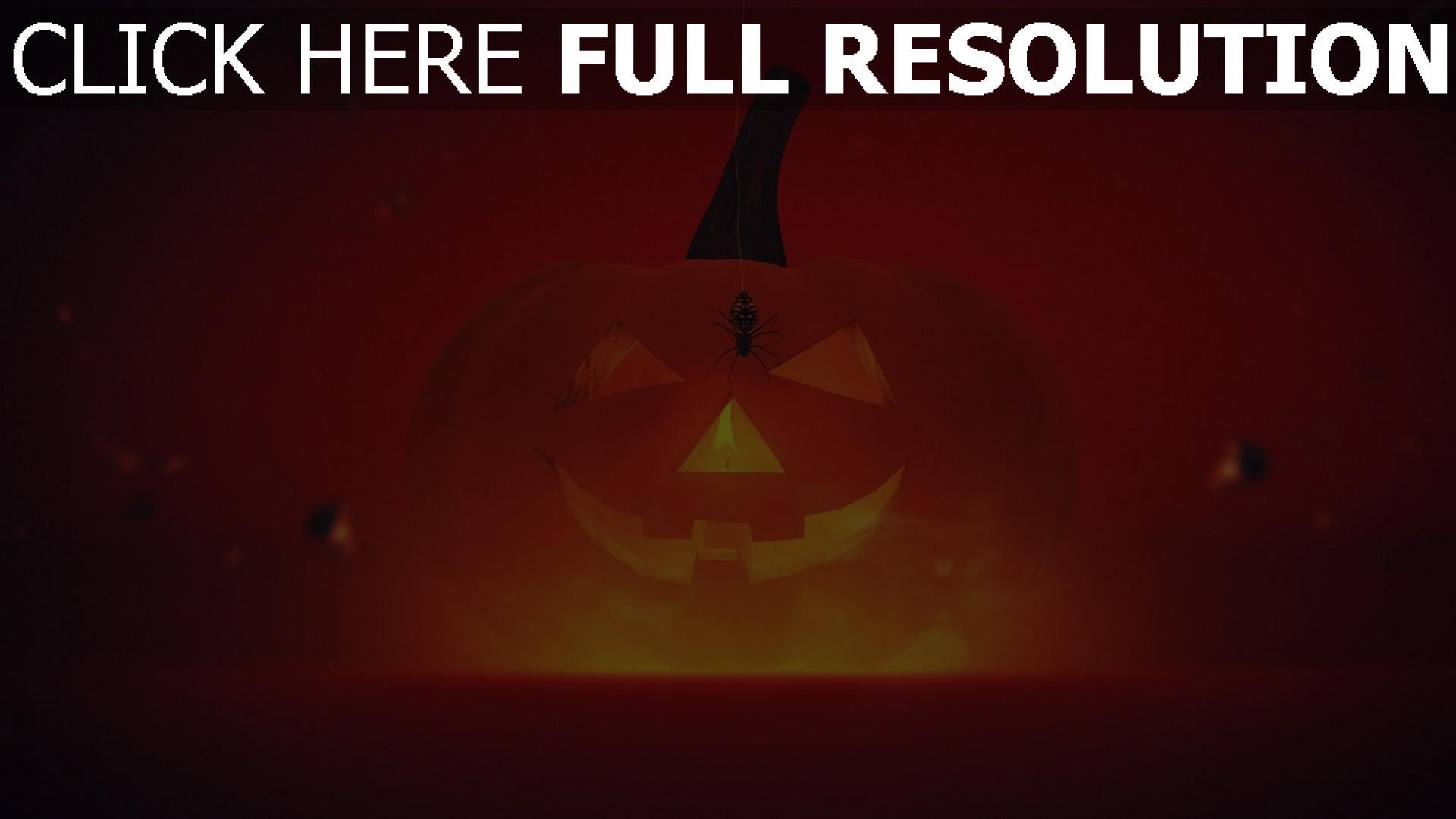 hd hintergrundbilder licht spinne halloween kürbis 1920x1080