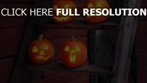 halloween jack-o-latern leiter kürbis