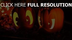 halloween entchen licht kürbis