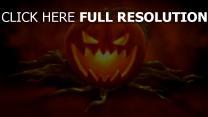 jack-o-latern wurzeln halloween