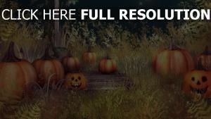jack-o-latern gras halloween kürbis