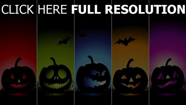 hd hintergrundbilder emotionen jack-o-latern farben minimalismus halloween