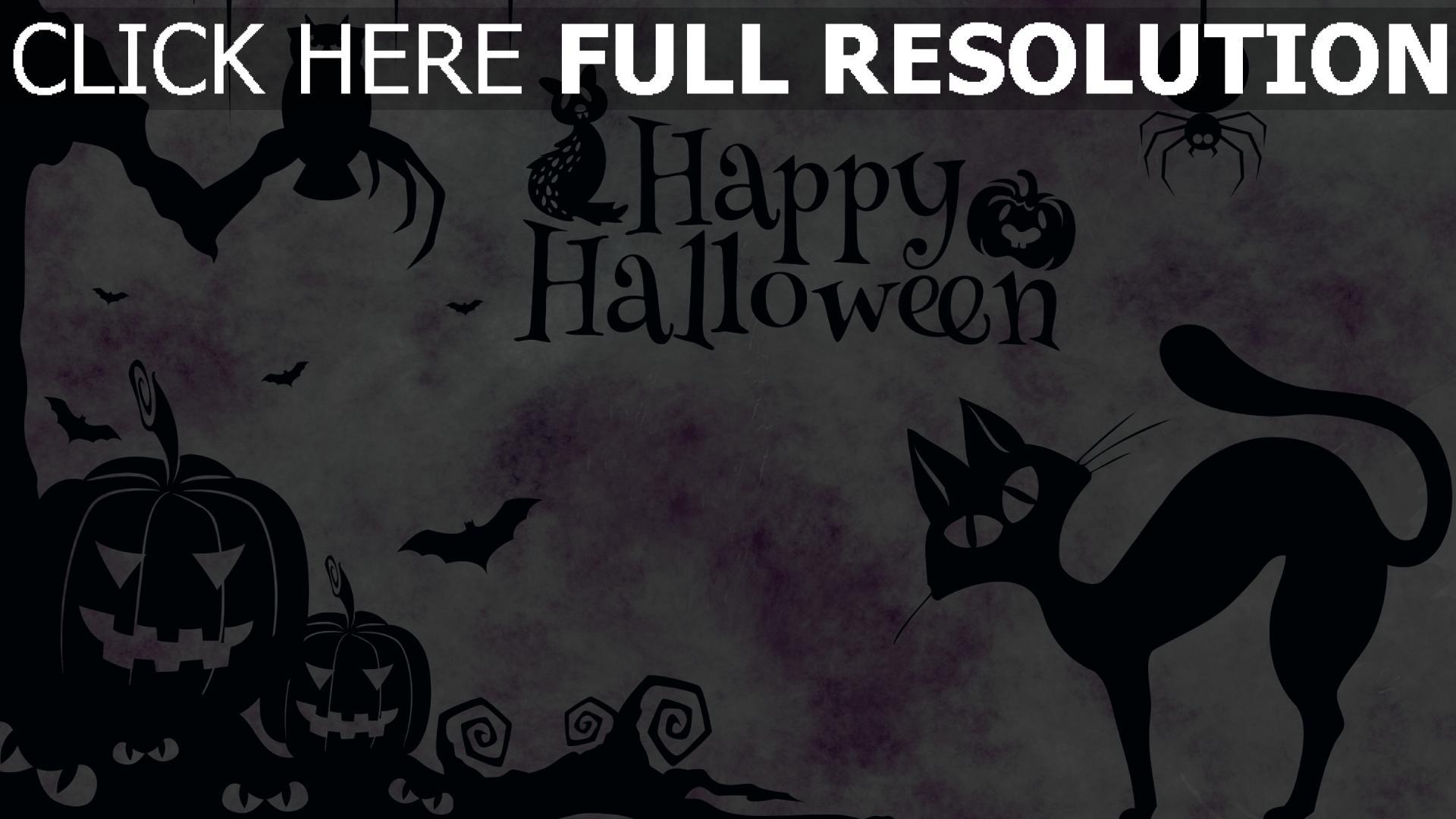 hd hintergrundbilder minimalismus spinne jack-o-latern eule halloween katze 1920x1080