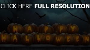 halloween krähe inschrift kürbis