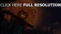 krähe mond jack-o-lantern vogelscheuche halloween feld