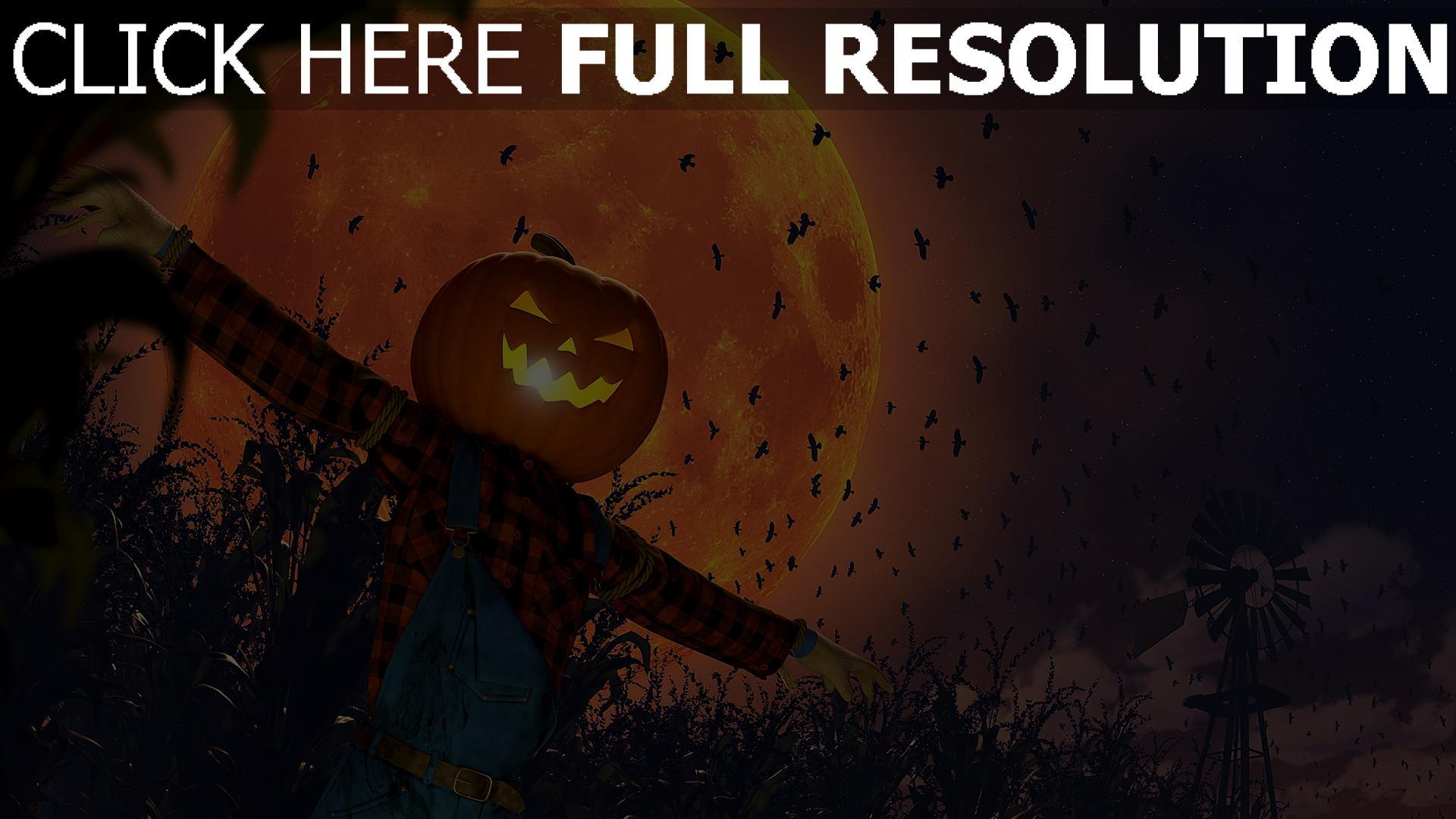 hd hintergrundbilder krähe mond jack-o-lantern vogelscheuche halloween feld 1920x1080