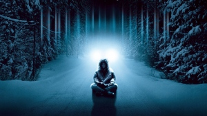 dreamcatcher licht schnee winter wald