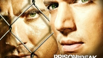 dominic purcell bruder prison break wentworth miller