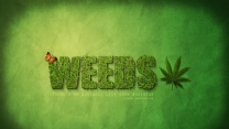 weeds mary-louise parker alexander gould kevin nealon hunter parrish