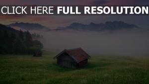 alpen gras wiese nebel himmel sonnenuntergang