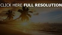 strand palmen meer sand sonne sommer urlaub sonnenuntergang