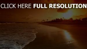 meer strand palmen sonnenuntergang wellen
