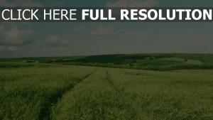 sommer feld grün hügel himmel wolken