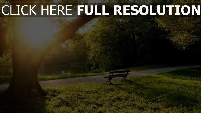 hd hintergrundbilder park baum teich sitzbank sonne sommer