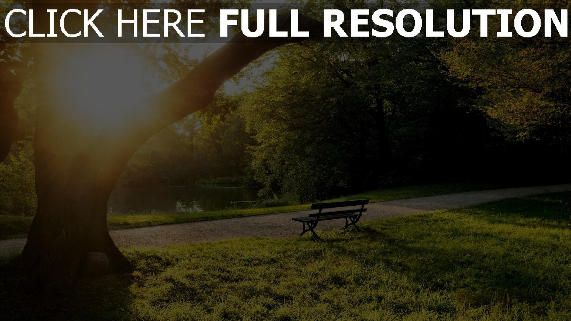 hd hintergrundbilder park baum teich sitzbank sonne sommer 1920x1080