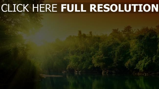 hd hintergrundbilder fluss bach wasser wald sonnenstrahlen licht