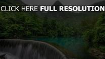 wasserfall klippe berg wald dunst wolken