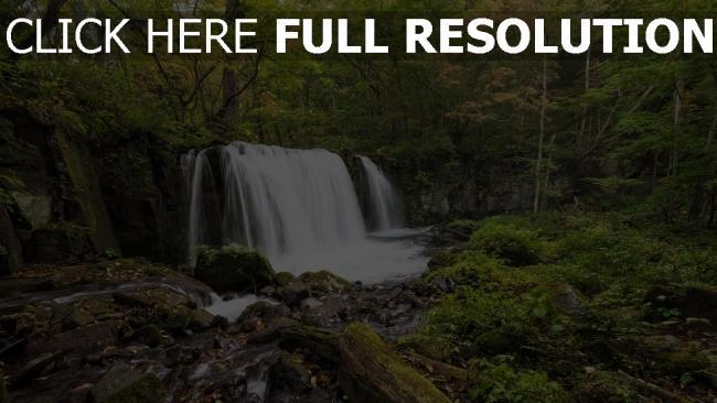 hd hintergrundbilder wald wasserfall wasser strom bäume steine