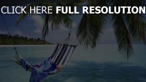 meer sommer urlaub hängematte palmen