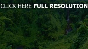 wasserfall wald urwald bäume berge