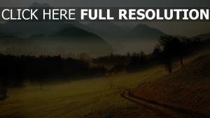 tal wald nebel berge böschung