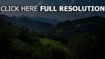 natur berge schön sommer bäume