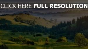 sommer natur hügel berge dunst bäumen
