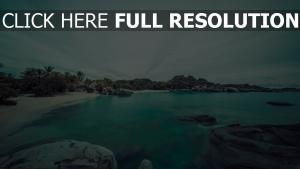 meer bucht felsen himmel strand pflanzen