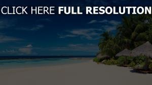 palmen strand meer sand sommer urlaub