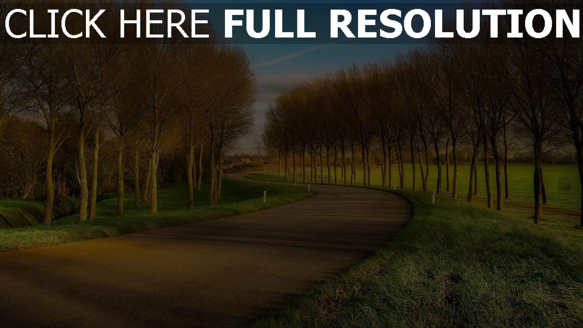 HD Hintergrundbilder gasse wicklung straße asphalt bäume ...