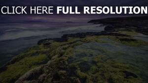 meer felsen riffe algen sturm