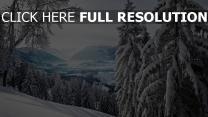 schneebedeckte berge bäume winter schnee landschaft
