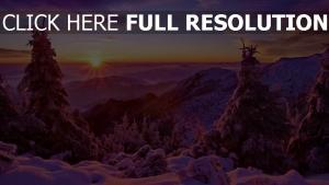 sonnenuntergang berge sonne bäume tannen schnee