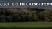 wiese hain bäume berge plateau schlucht