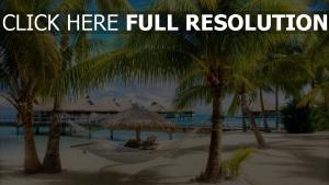 strand urlaub hängematte palmen bungalows