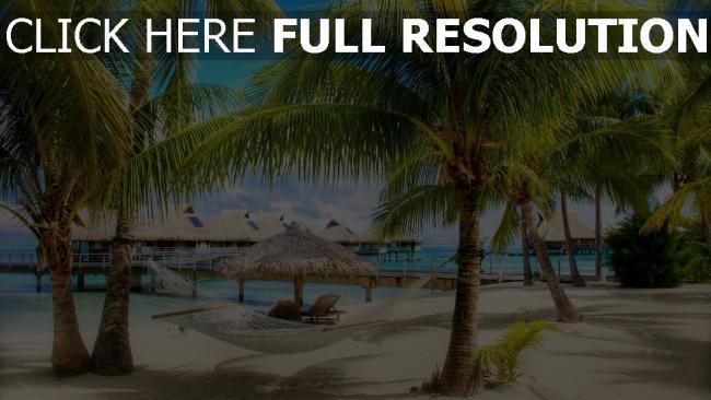 hd hintergrundbilder strand urlaub hängematte palmen bungalows