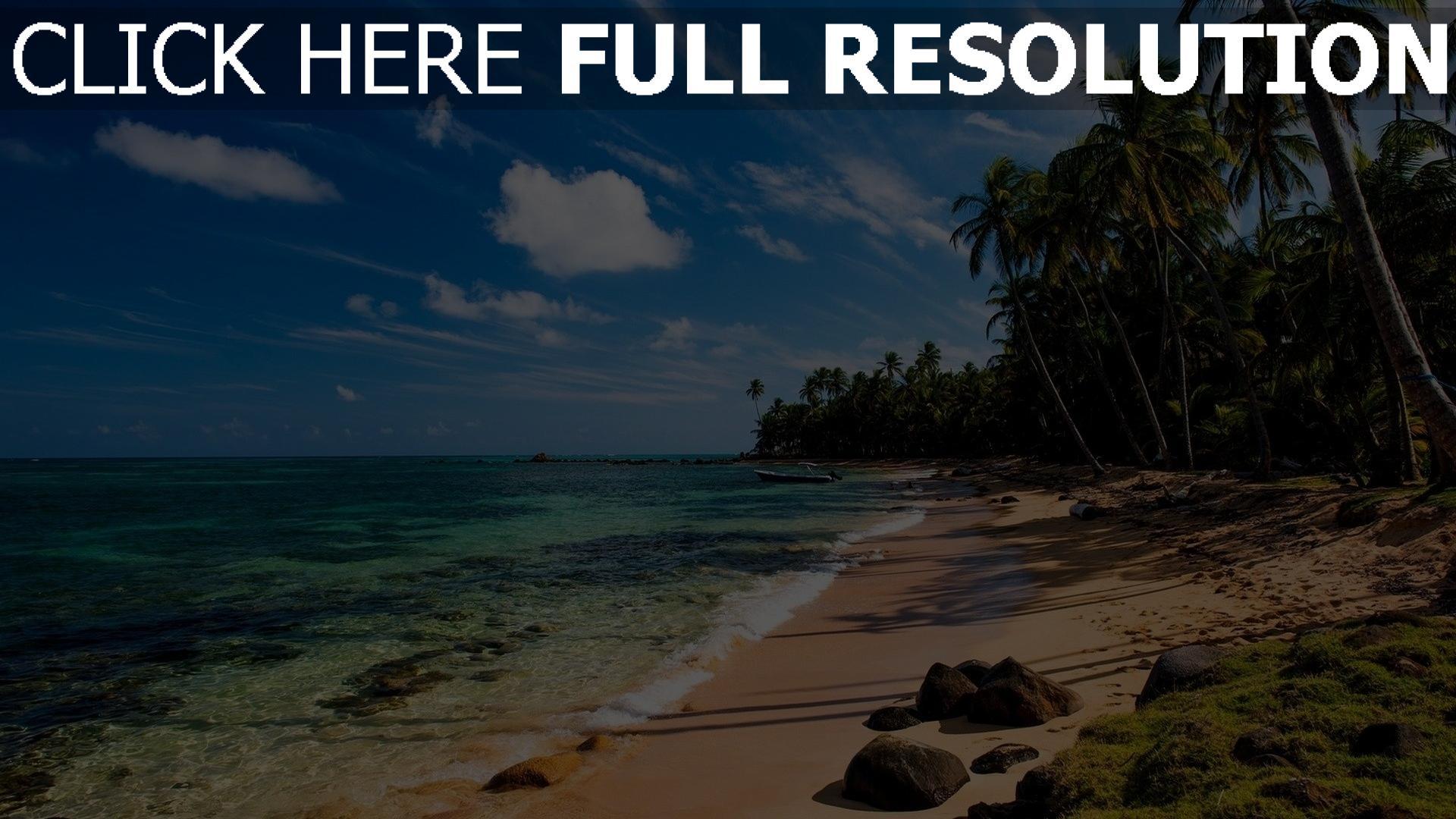 hd hintergrundbilder strand tropisch palmen meer wasser himmelblaue 1920x1080