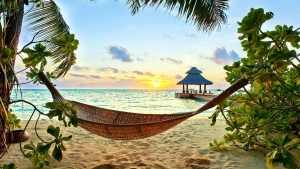 strand tropisch urlaub hängematte sonne meer