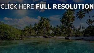 tropisch palme meer lagune urlaub