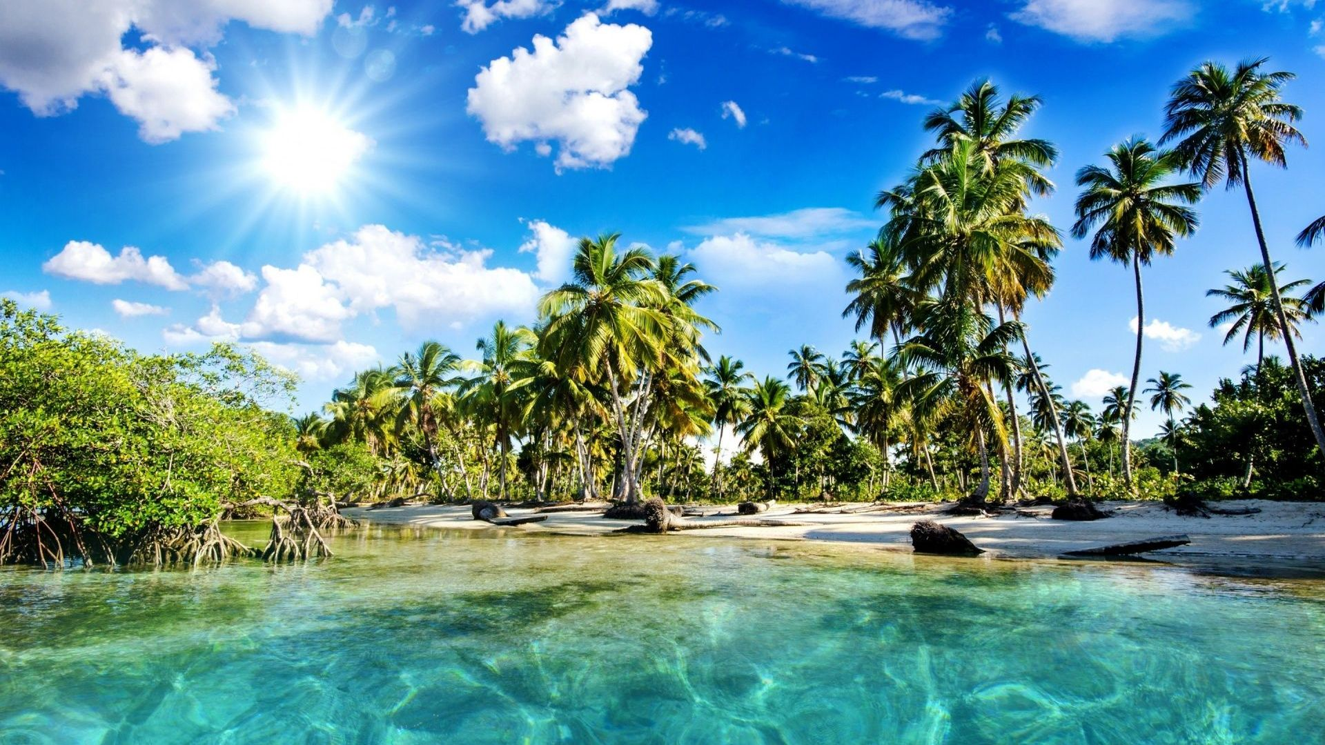 hd hintergrundbilder tropisch palme meer lagune urlaub desktop hintergrund. Black Bedroom Furniture Sets. Home Design Ideas