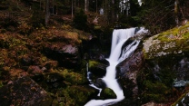 wald steine strom wasserfall berg