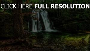 bäume steinmauer wasserfall strom