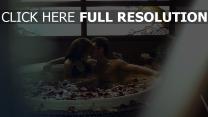 paar küssen blütenblätter romantik