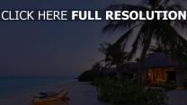 romantik küste meer palmen